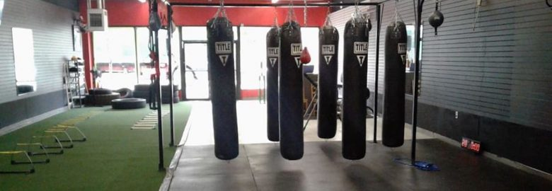 Untamed Boxing and Fitness
